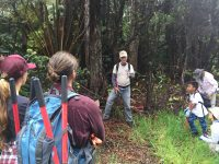 Paul Field instructs volunteers on vegetation management at Hawaii Volcanoes National Park. NPS Photo