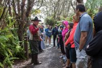 Walk into the past with Dr. Jaggar. NPS Photo