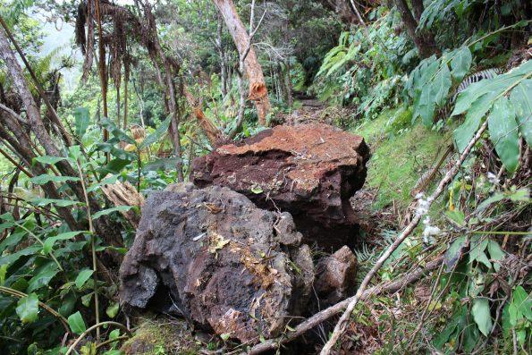 Boulder damage on Kilauea Iki Trail. NPS Photo by Jessica Ferracane.