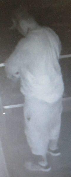 Surveillance Image 1
